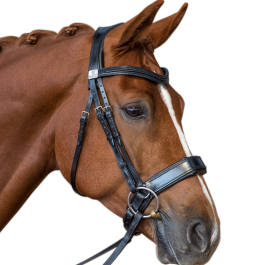 Fairfax Performance Snaffle Bridle
